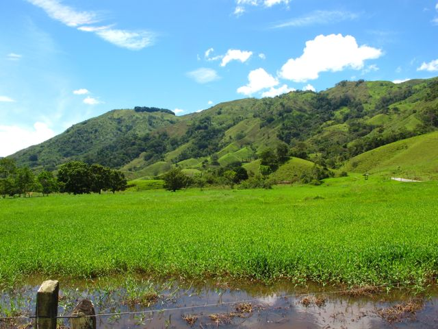 Hills around Yolombó