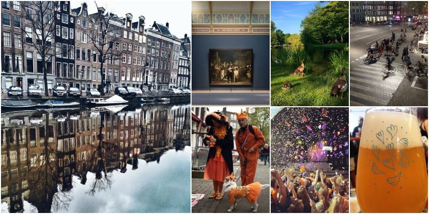 Reasons to Visit Amsterdam