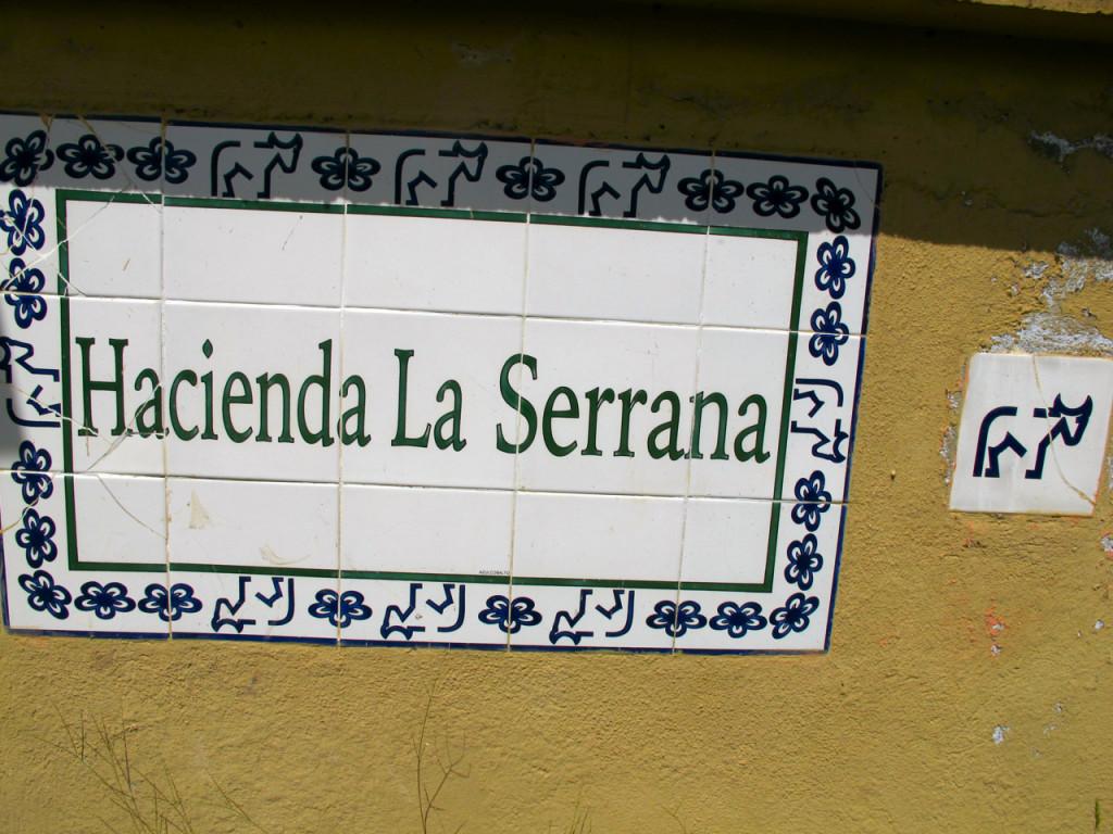 Hostel La Serrana in Salento, Colombia