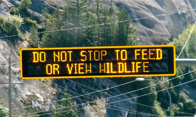 Canadian Wildlife signs