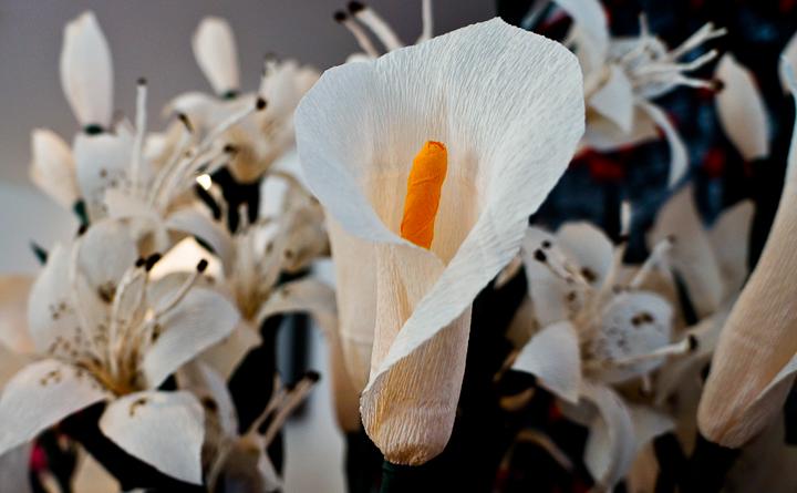 Paper flowers for the Festa de Santa Croce in Carzano, Brescia
