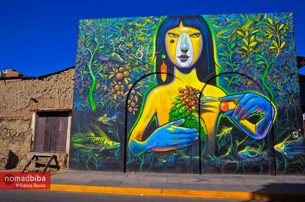Street art in Cochabamba by Steep