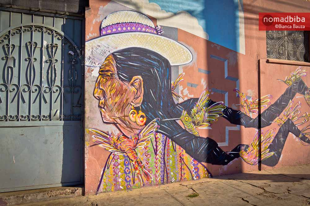 Brigada Negotropica and Charquipunk street art in Cochabamba, Bo