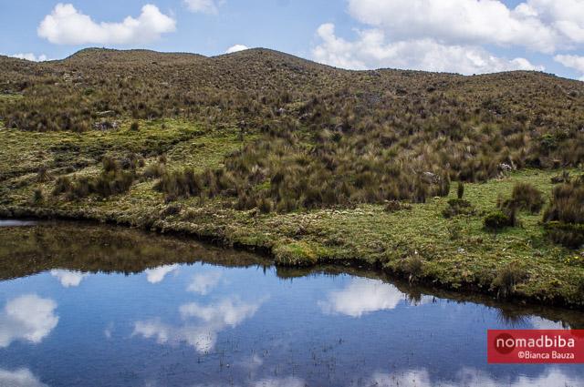 Reflection at El Cajas National Park in Ecuador