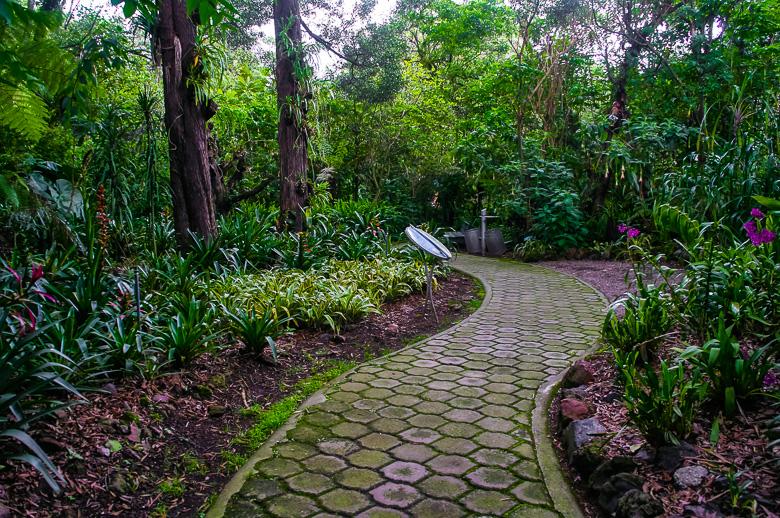Path at Quito Botanical Garden in Ecuador