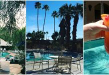 Best Hotels in Palm Springs