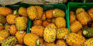 Pineapples at a market in San Jose, Costa Rica