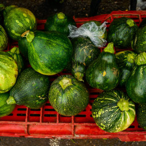Zucchini at a market in San Jose, Costa Rica