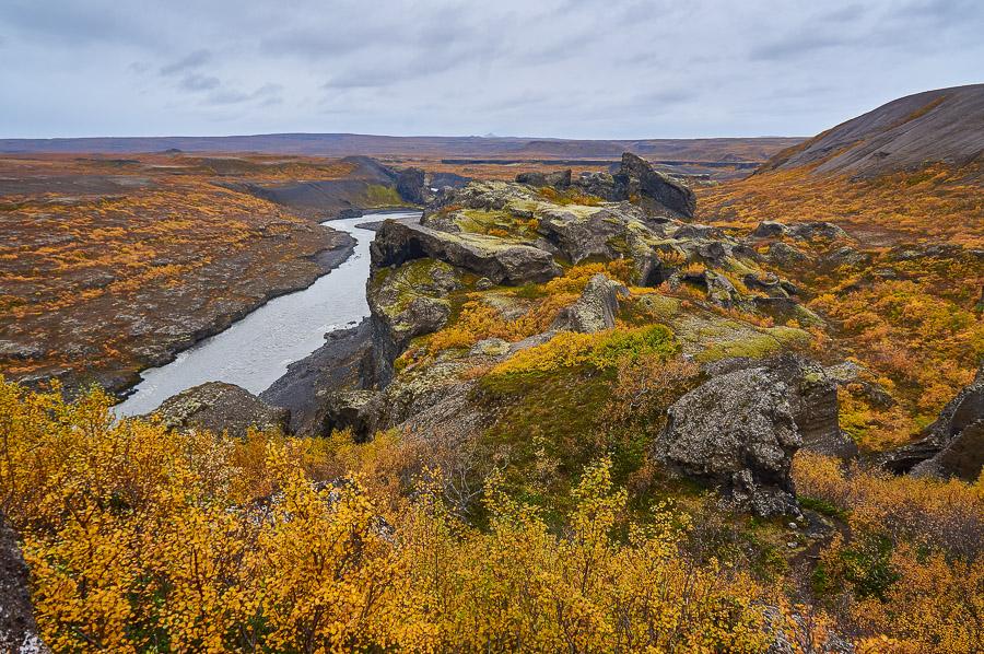 Jökulsárgljúfur canyon in Iceland